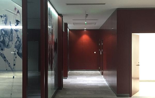 VIP室木饰面板护墙